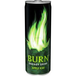Burn Apple-Kiwi 0,25l DOB