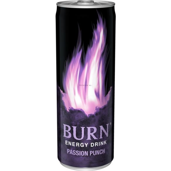Burn Passion Punch 0,25l DOB