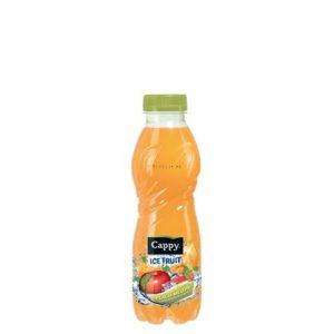 Cappy Ice Fruit Barack-Dinnye 0,5l PET