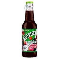Topjoy Sárkánygyümölcs 0,25l PAL